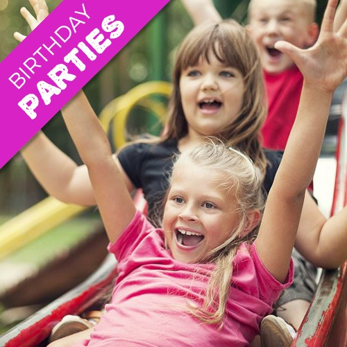 Share Discovery Village Birthday Parties